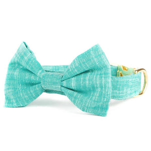 Peacock Bow Tie Collar from The Foggy Dog