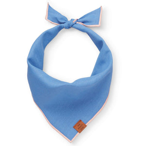 Periwinkle Dog Bandana from The Foggy Dog