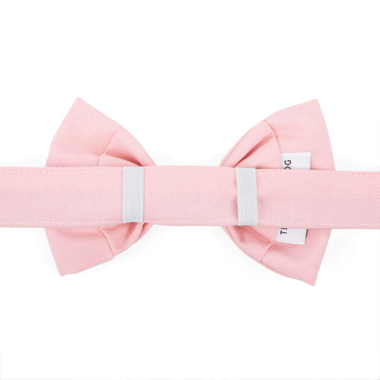 Petal Pink Dog Bow Tie from The Foggy Dog