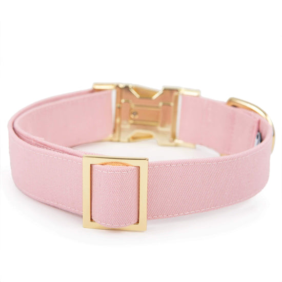 Petal Pink Dog Collar from The Foggy Dog