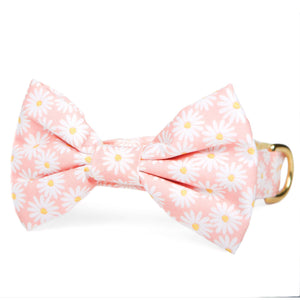 Pink Daisies Bow Tie Collar from The Foggy Dog
