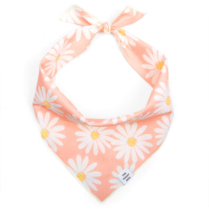 Pink Daisies Dog Bandana from The Foggy Dog