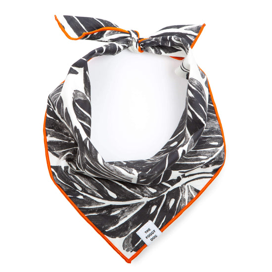 Playa Dog Bandana from The Foggy Dog