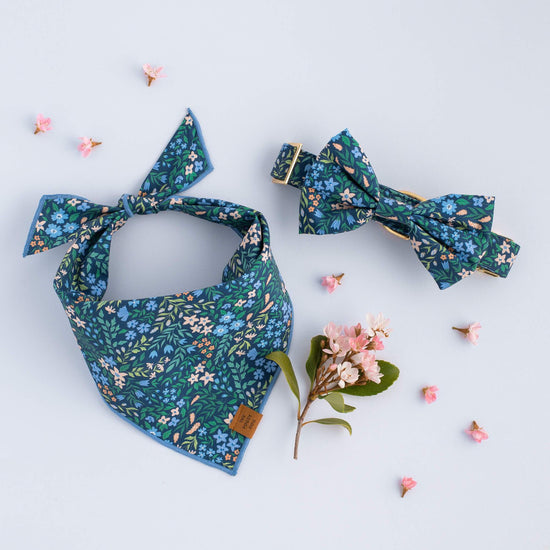 Primavera Bow Tie Collar from The Foggy Dog