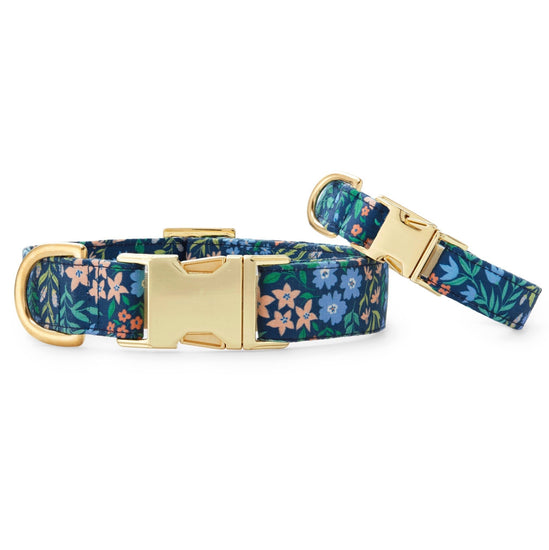 Primavera Dog Collar from The Foggy Dog