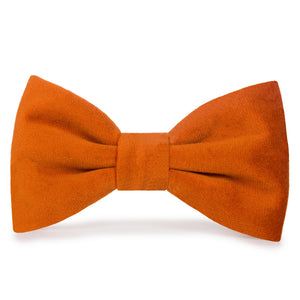 Pumpkin Velvet Dog Bow Tie from The Foggy Dog