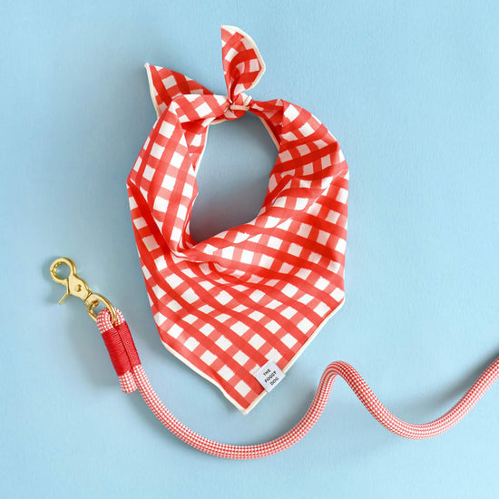 Red Gingham Dog Bandana from The Foggy Dog