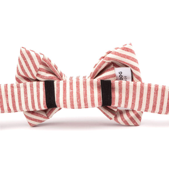 Red Stripe Dog Bow Tie from The Foggy Dog