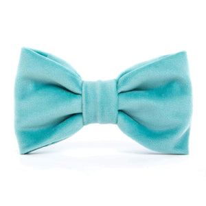 Robin's Egg Velvet Dog Bow Tie from The Foggy Dog