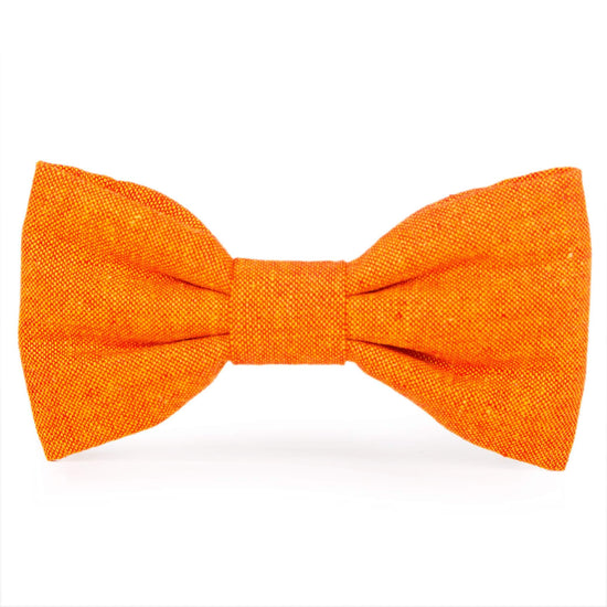 Satsuma Dog Bow Tie from The Foggy Dog