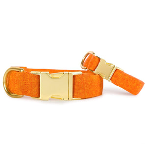 Satsuma Dog Collar from The Foggy Dog
