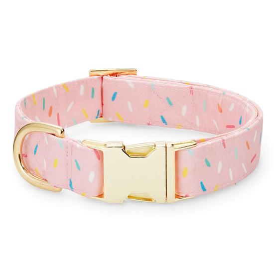 Sprinkles Dog Collar from The Foggy Dog