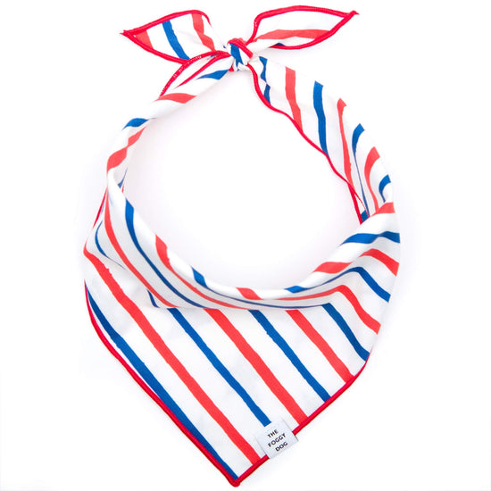 Stars and Stripes Dog Bandana (Reversible) from The Foggy Dog