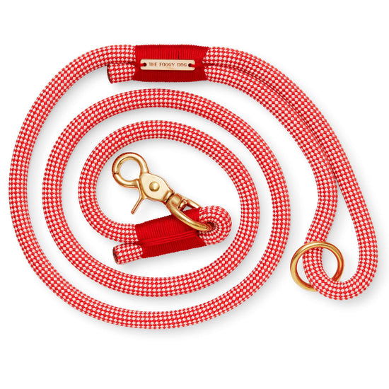 Strawberry Climbing Rope Dog Leash from The Foggy Dog