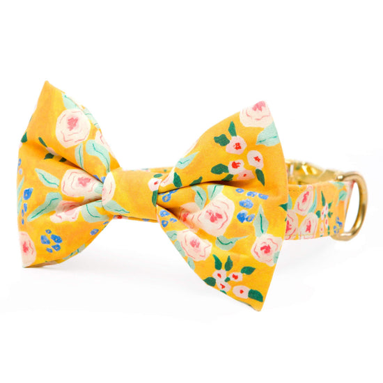 Sunny Days Bow Tie Collar from The Foggy Dog