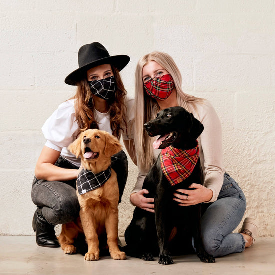 Windowpane Black Face Mask and Bandana Set from The Foggy Dog