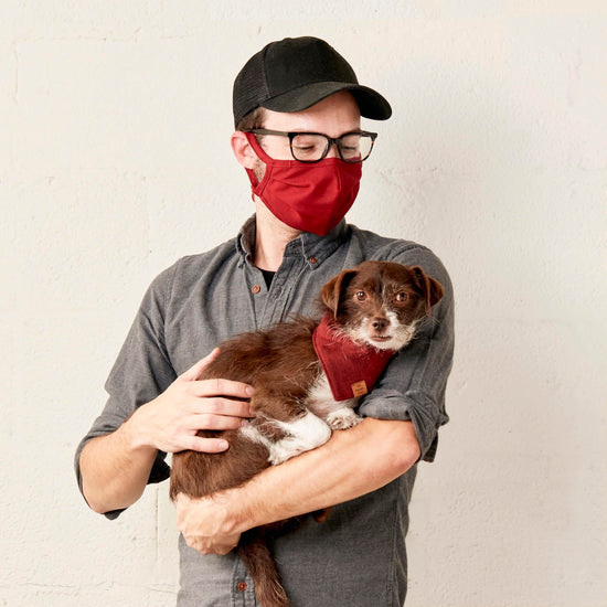 Wine Reusable Face Mask from The Foggy Dog
