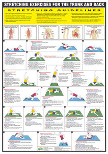Stretching Exercise Chart -Trunk and Back