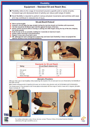 Body Flexibility Assessment Chart