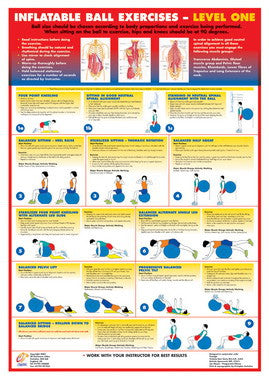 Swiss  Ball Exercise Chart - Level 1 - Chartex Ltd