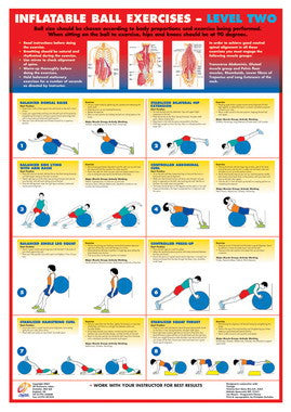 Swiss Ball Exercise Chart - Level 2 - Chartex Ltd