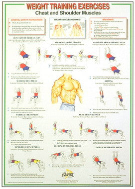 Chest and Shoulder-Weight Training Chart