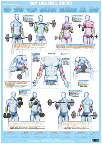 Arm Muscles (Front) Weight Training Exercise Chart