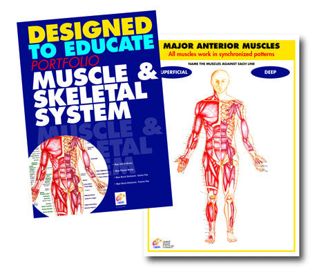 Anatomy and Physiology Manuals - Set of 4