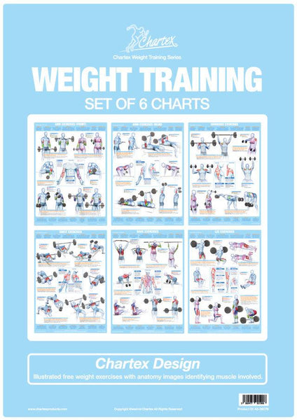 Weight Training Exercise Charts - Set of 6