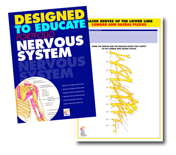 Nervous System Education Manual