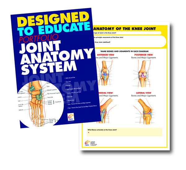 Joint Anatomy Education Manual
