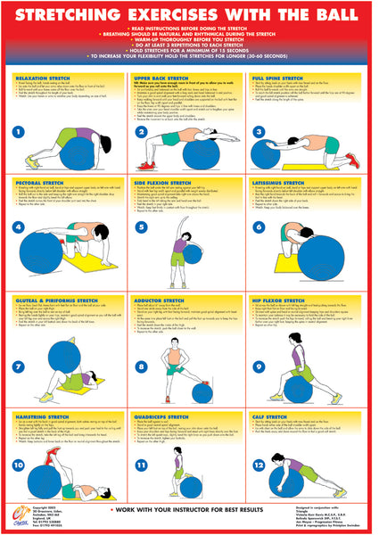 Exercise Ball Charts - Set of 4