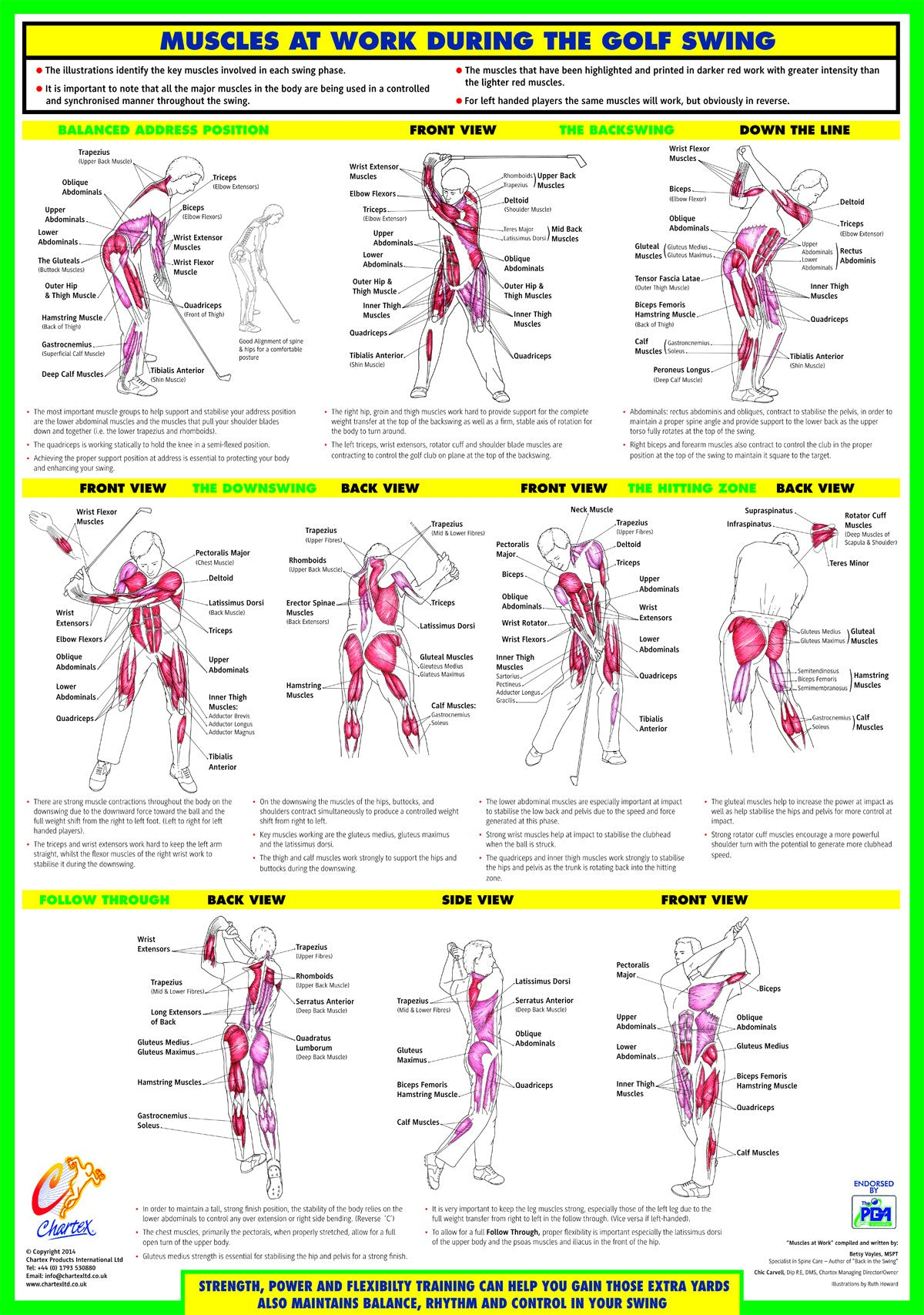 Golf Swing Training Chart