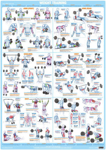 Weight Training Exercise Chart