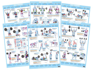 Weight Training Exercises - Set of 6 Charts