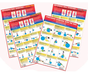 Swiss Ball Exercise Charts - Set of 4
