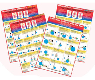 Exercise Ball - Set of 4 Charts