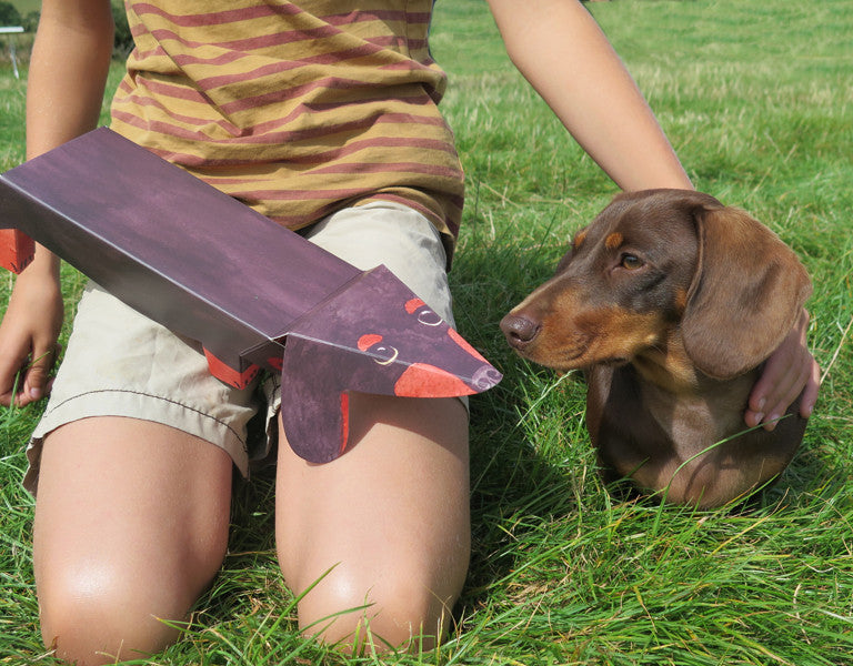 Pop Up Pet Dachshund with Jasper