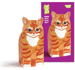 Pop Up Pet Ginger Tom