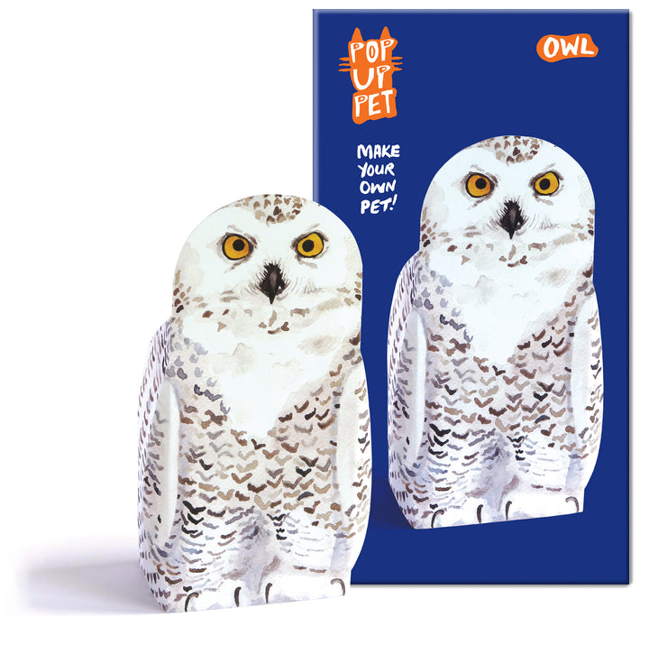 Pop Up Pet Owl