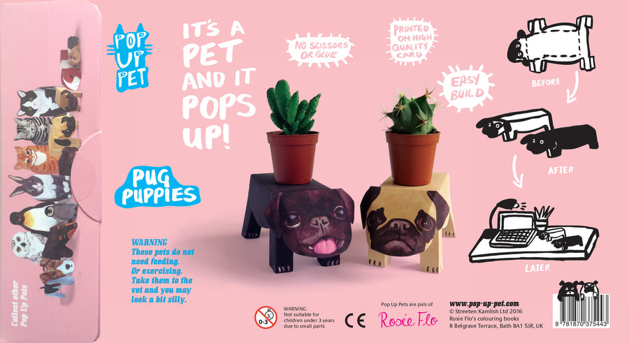 Pop Up Pet Pug Puppies reverse