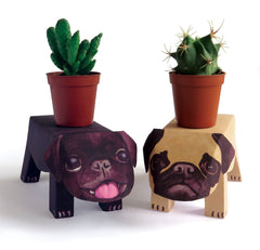 Pop Up Pet Pug Puppies with cacti