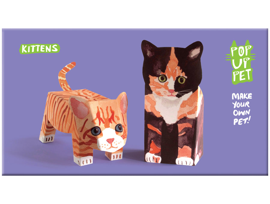 Pop Up Pet Kittens cover