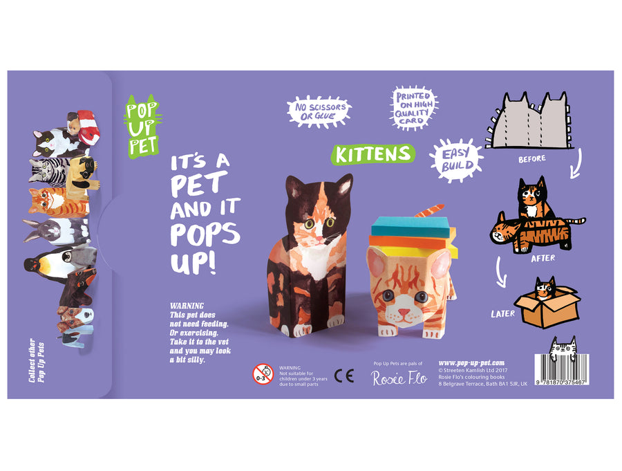 Pop Up Pet Kittens reverse