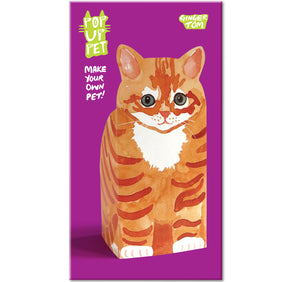 Pop Up Pet Ginger Tom cover