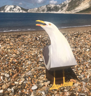 Pop UP Pet Seagull on beach