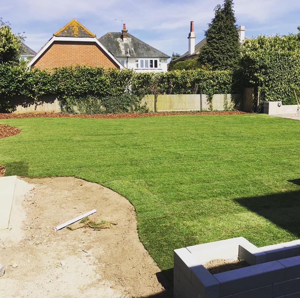 What could a new lawn do for you?