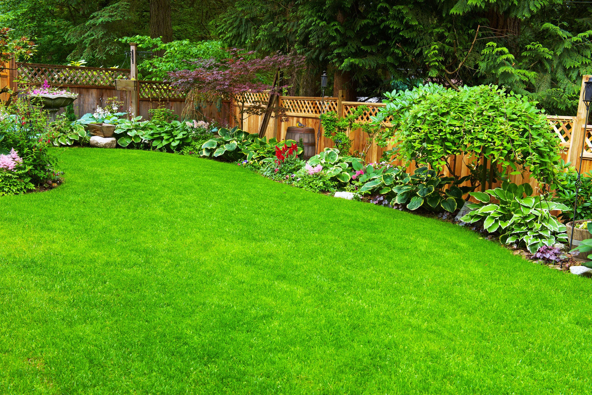 Top 5 Tips for Creating a New Lawn
