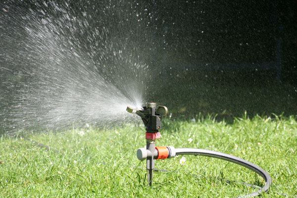 Restoring your lawn after a drought