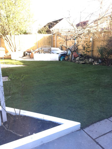 newly turfed lawn at sandbanks